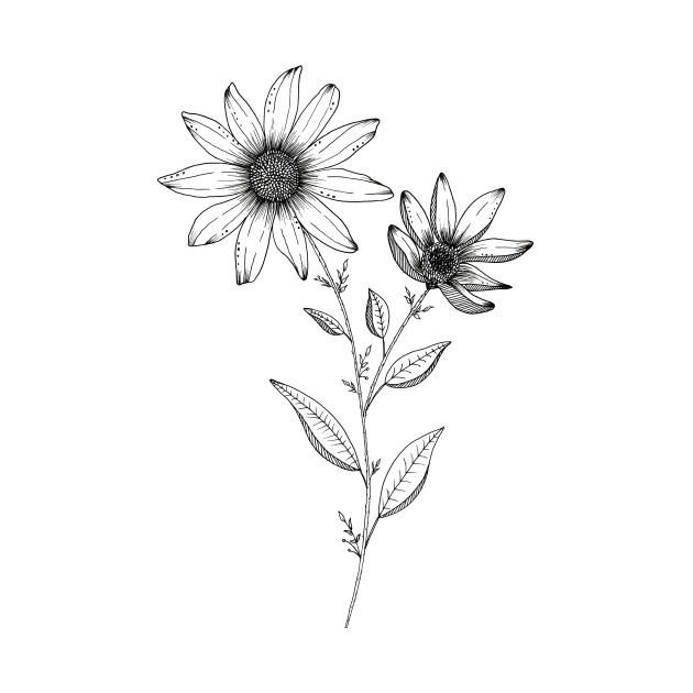 630x630 Wildflower Ink Drawing