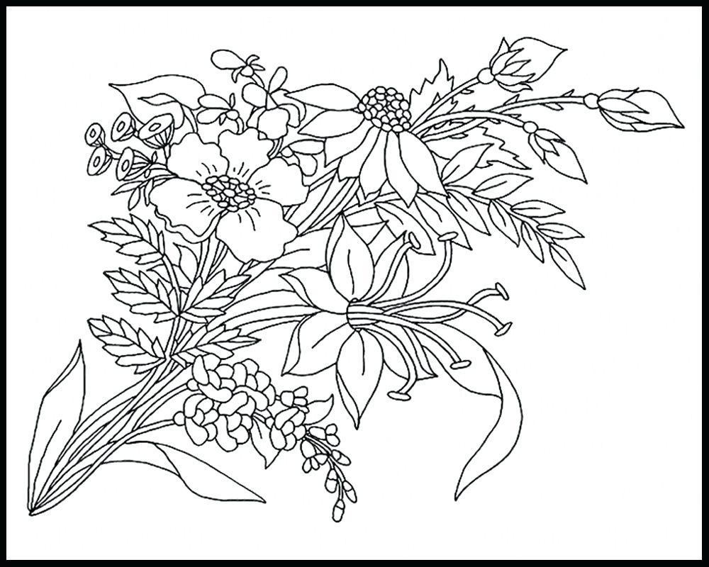1000x800 Coloring Wildflower Coloring Pages Amazing Free Printable Aloe