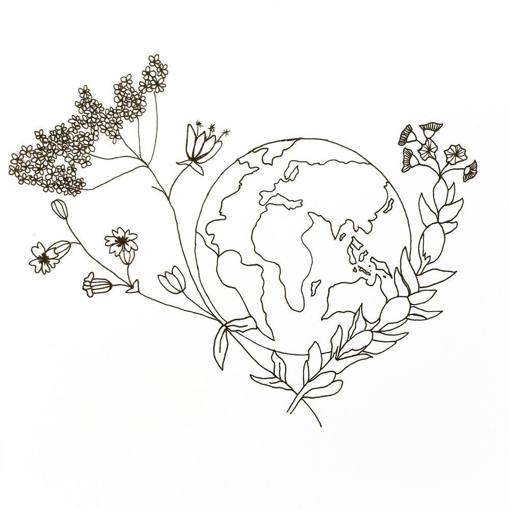 Wildflowers Drawing