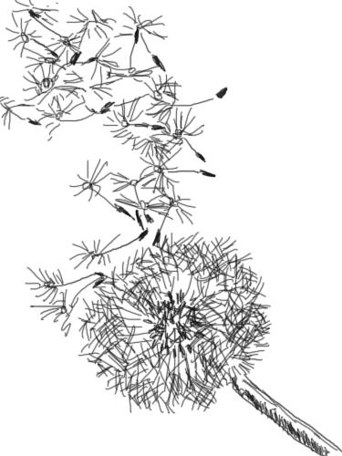 375x500 The Kitchen Table Crafter Free Digi Sketch Dandelion In The Wind