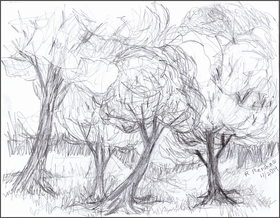900x700 Windy Day Drawing By Ruth Renshaw
