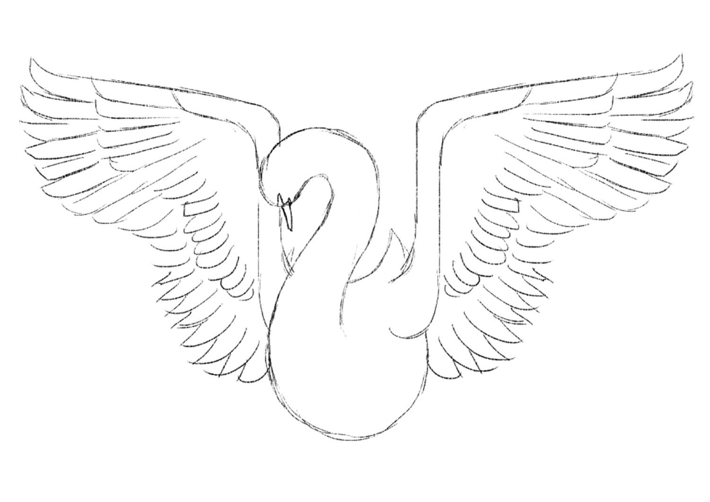 1500x1061 Photoshop Tutorial Create A Beautiful Bird Illustration