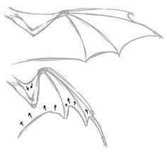 236x218 Raptor Bird Wing Tutorial By Kutkumegsan Draw Angel And Bird
