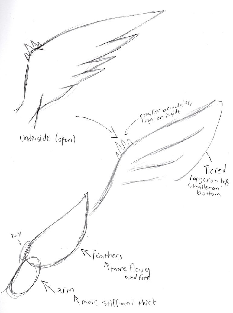771x1037 Reshiram Wing Tutorial 1 By Dragoonzia