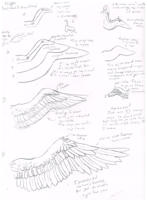 1024x1408 Wing Tutorial (How I Draw Them) By Jackofalltrades0097