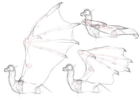 540x405 Dragon Wing Tutorial Tumblr