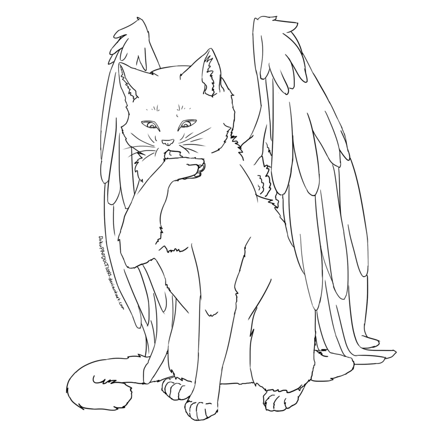 900x900 Cat With Wings Cat With Wings