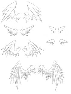 Wings Drawing Tutorial At Getdrawings Com Free For Personal Use
