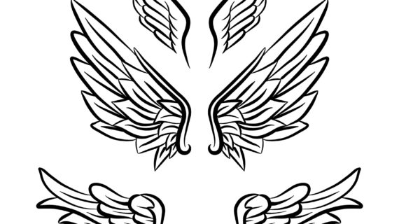 570x320 Angel Wings Line Drawing 3 Angel Wings Line Art