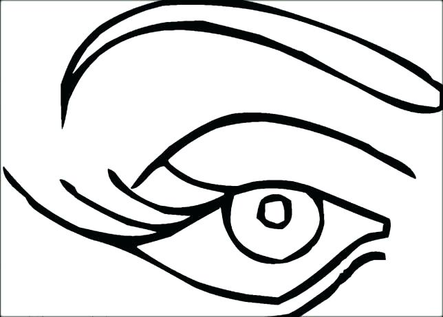 644x462 Eye Spy Coloring Pages Free Big Animal Her The Winking Youth Exam