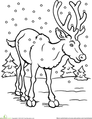 301x392 Winter Animals Coloring Pages For Preschool Page Kids