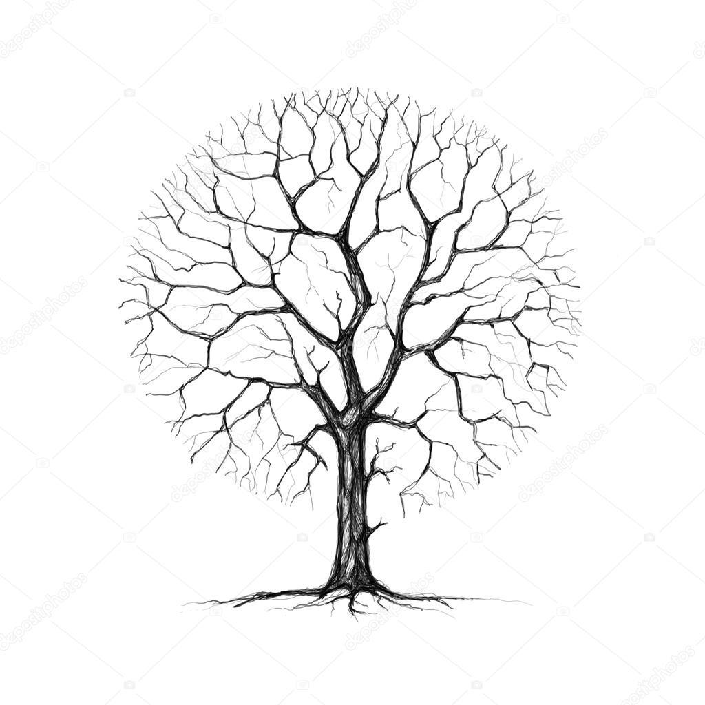 1024x1024 A Tree, Winter, Drawing Stock Photo Seregalsv