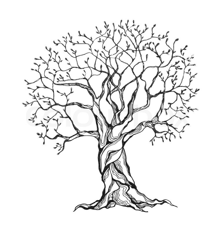 766x800 Winter Tree In A Stylized Style. Black And White Colors. Isolated