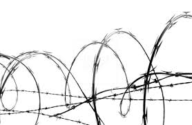 278x181 Image Result For Barbed Wire Drawing Year 9 Barbed Wire