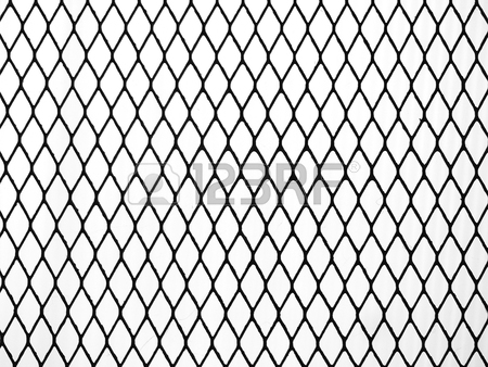 450x338 Decorative Wire Mesh With Tree Root Stock Photo, Picture
