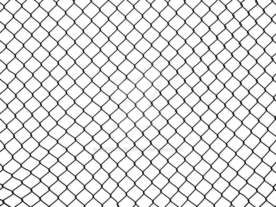 900x675 Transparent Wiremesh 1 By Limited Vision Stock