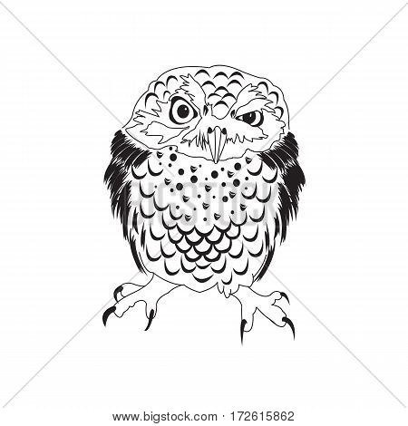 450x470 Wise Old Owl Books Images, Illustrations, Vectors
