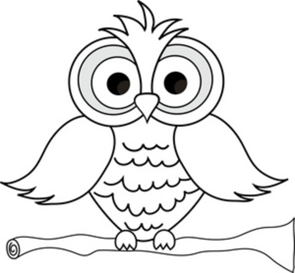 600x556 Wise Owl With Big Eyes On A Tree Limb In Black And White Smu