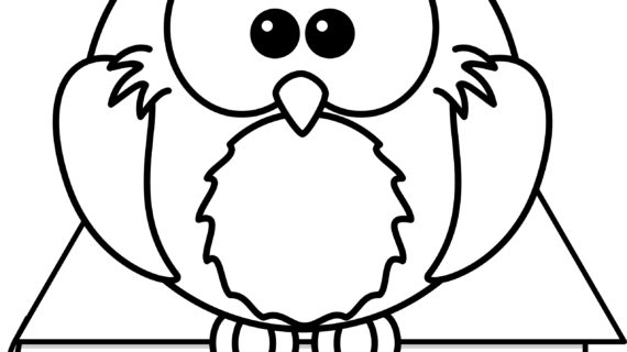 570x320 Books On Drawing Cartoons How To Draw A Wise Owl