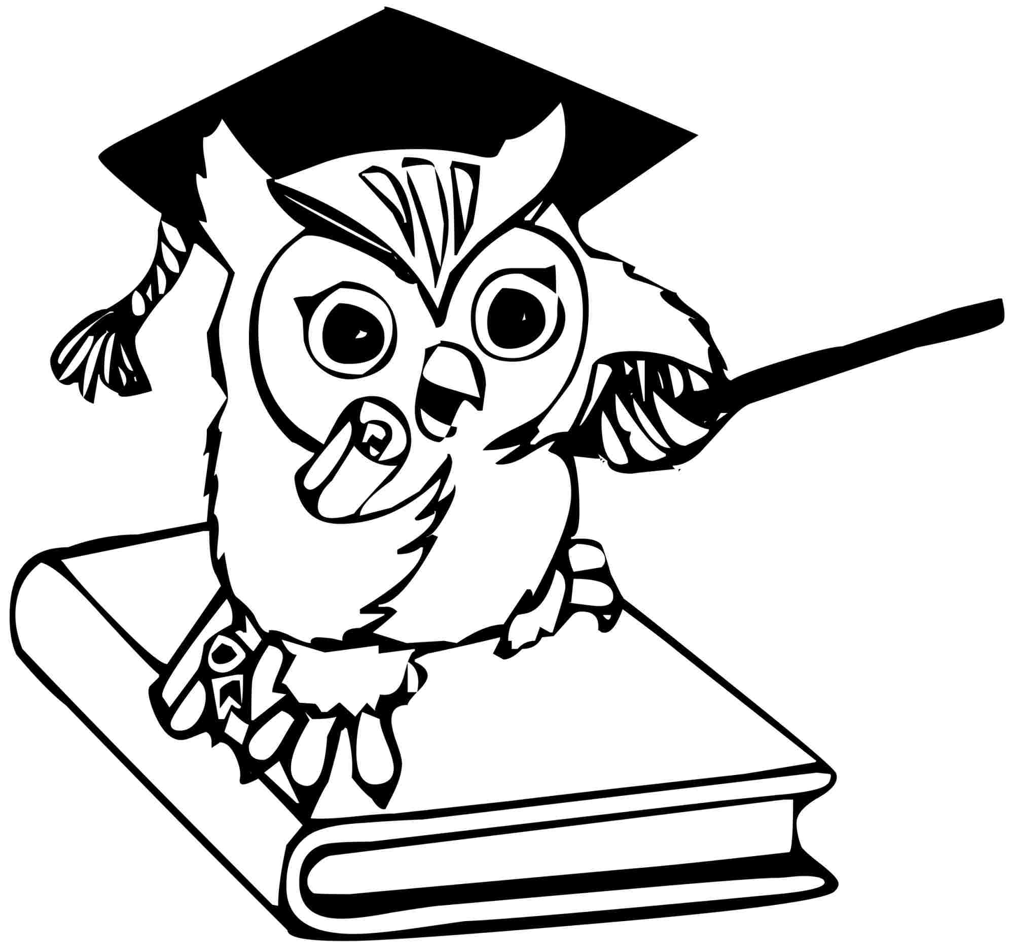 wise owl drawing at getdrawings  free download