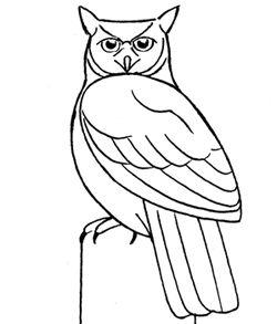250x293 Drawn Owl Easy