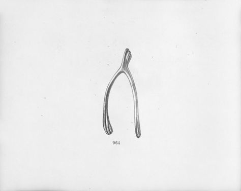 474x377 A Forked Bone (The Furcula) Between The Neck And Tattoo