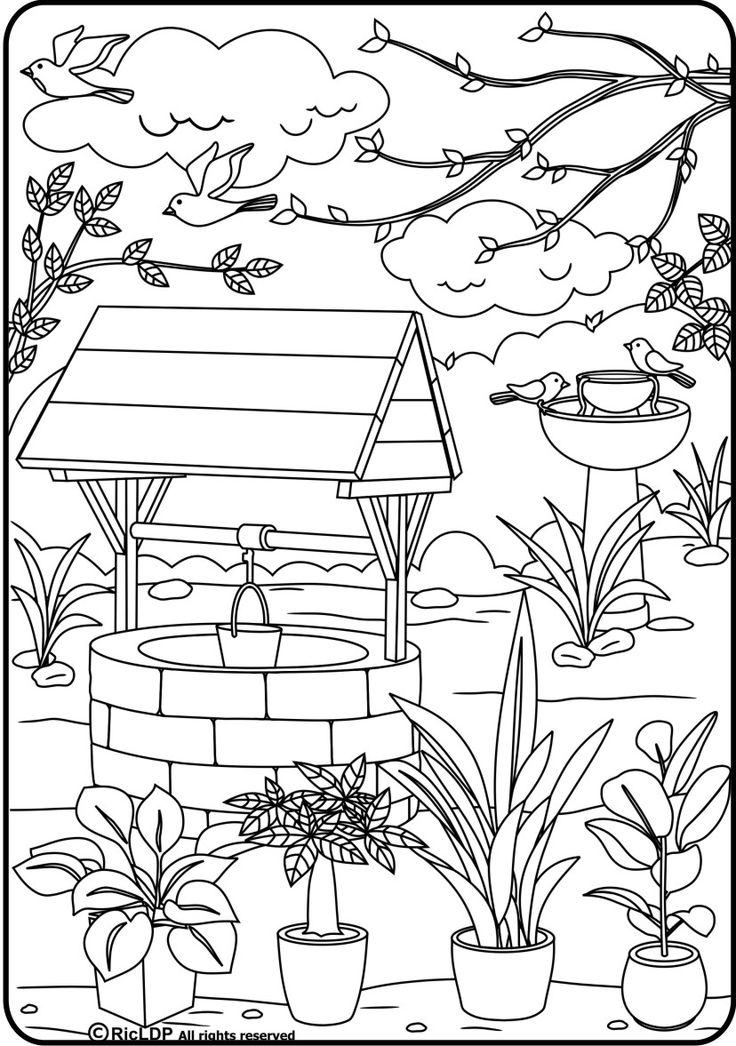 Wishing Well Drawing