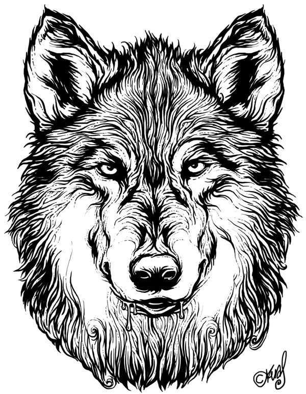 600x771 42 Best Wolfism Images On Wolves, Wolves Art And A Wolf