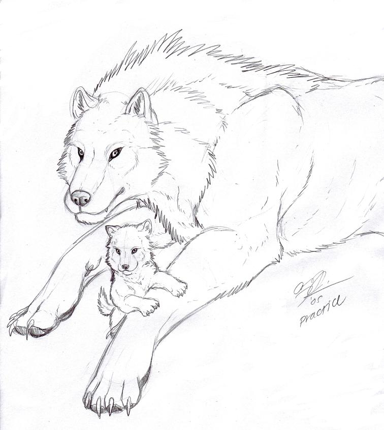756x845 Mother Wolf By Noheasurfer