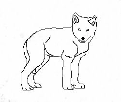 250x211 Wolf Cub Outline 2 By Ace118