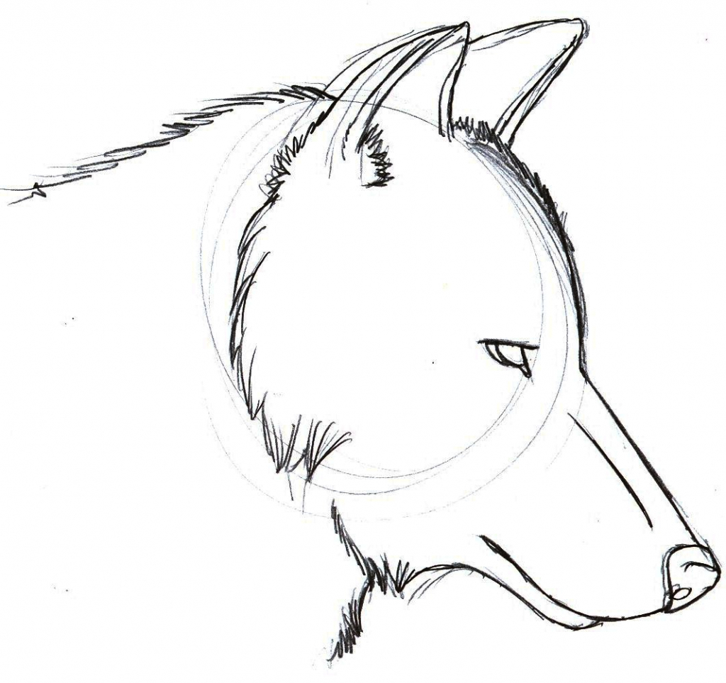 1024x963 Easy Drawings Of Wolves Easy Drawing Of A Wolf