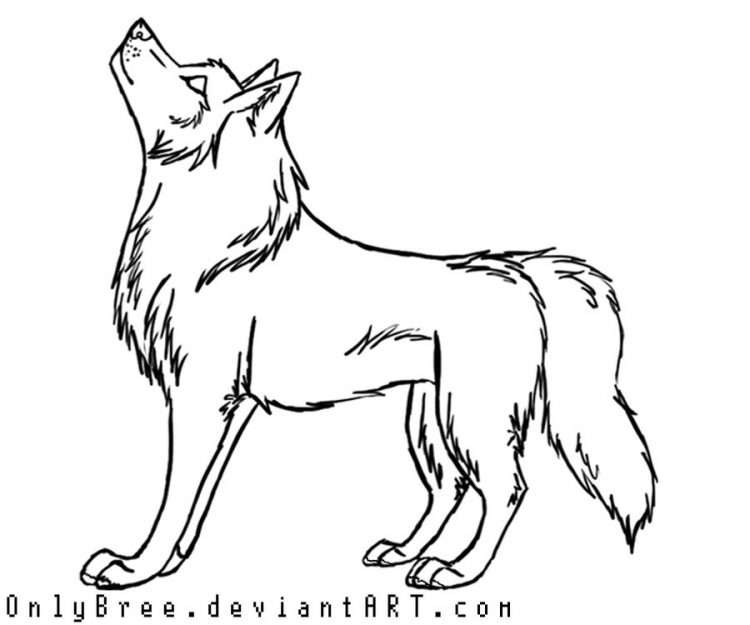 750x625 Drawing Cool Cartoon Wolf Drawings As Well As Cool Arctic Wolf