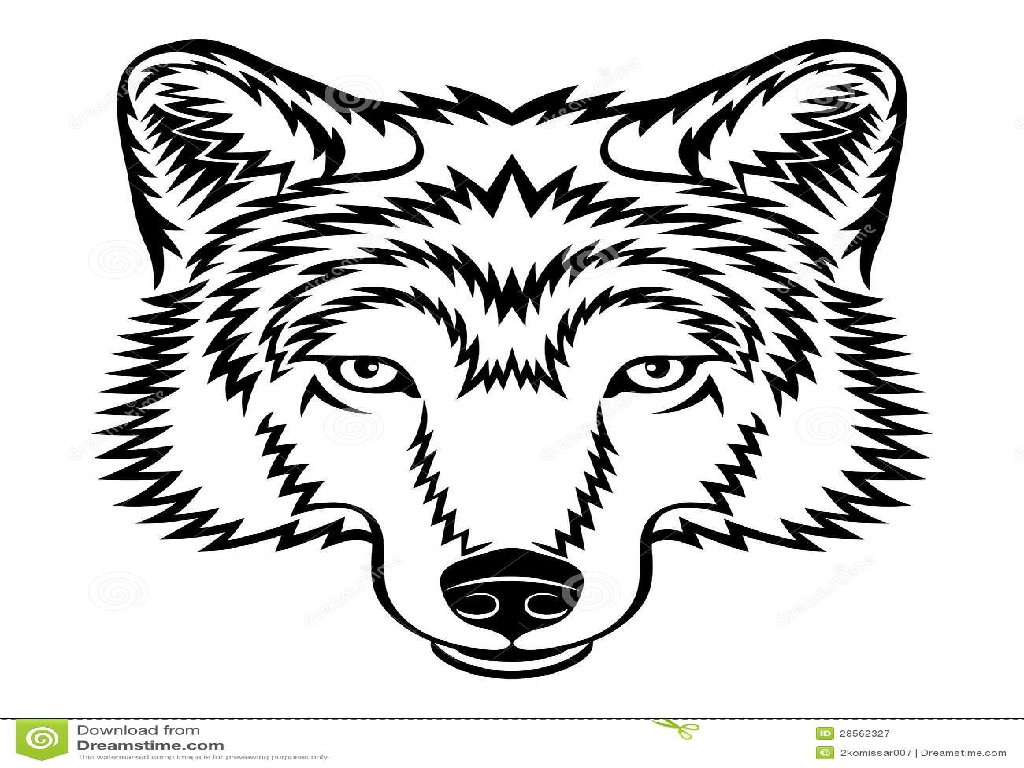 Wolf Drawing Face