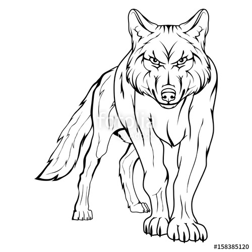 500x500 Vector Sketch Of A Wolf. Business Sign Logotype Wolf Face. Sketch