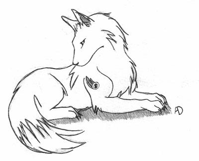 Wolf Drawing Pics