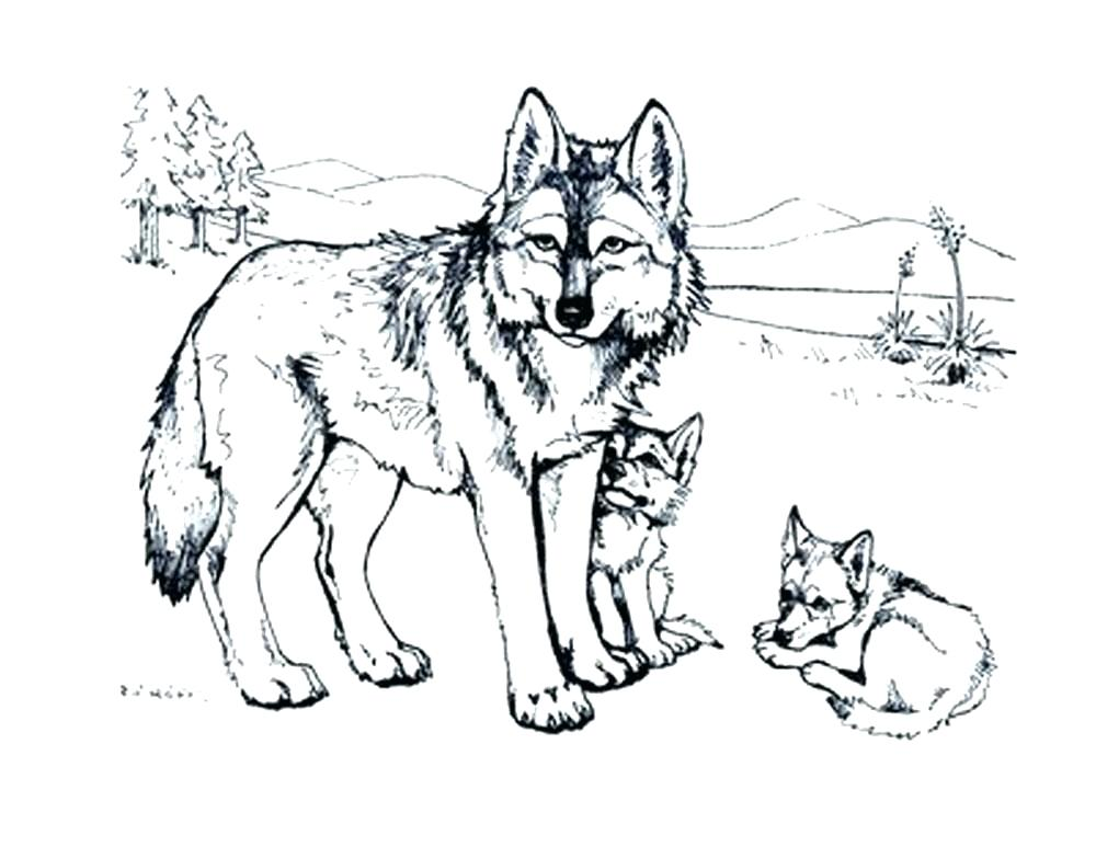 1000x773 Winged Wolf Coloring Pages Coloring Trend Medium Size Wolf