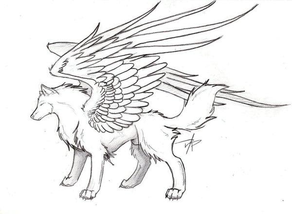 600x440 Winged Wolf By Spiritwolf517