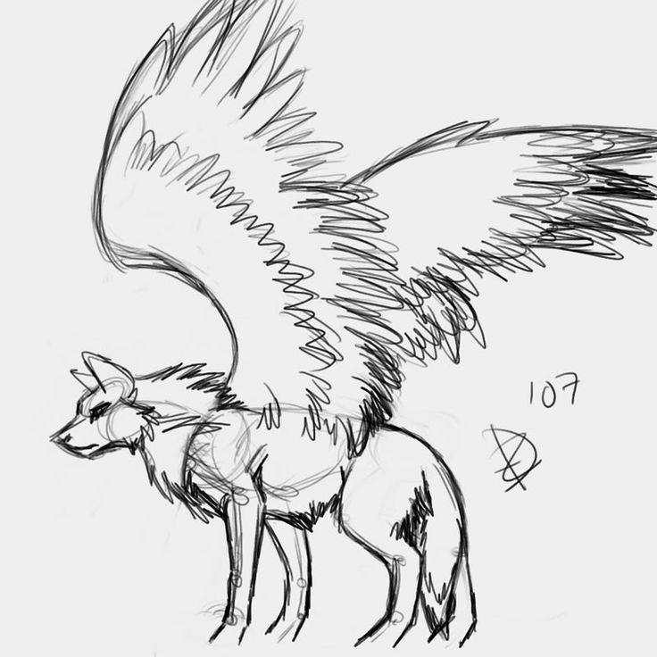 736x736 Wolf Drawing With Wings Wolves With Wings Drawings Addy's Art