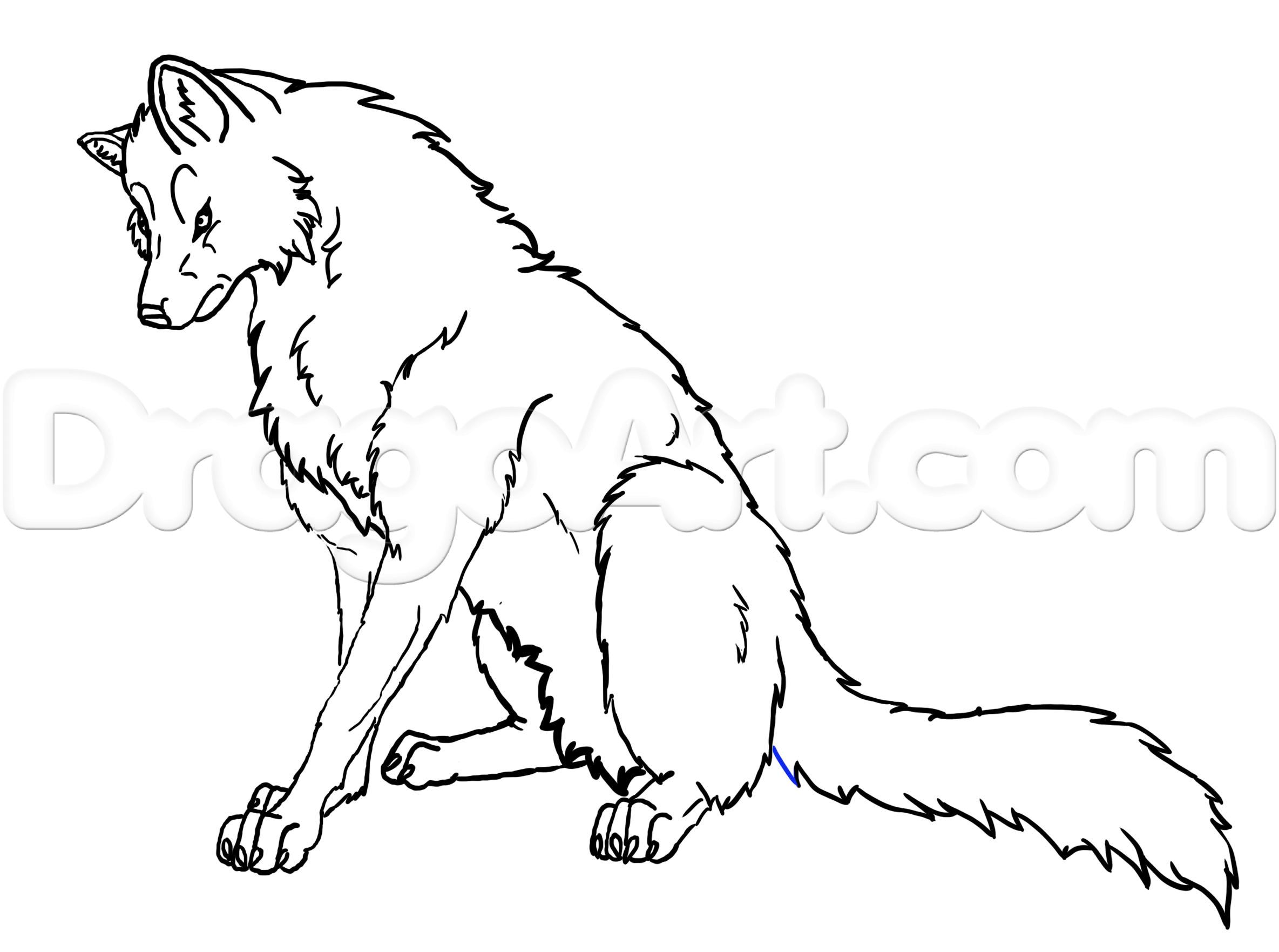 2369x1763 How To Draw A Howling Wolf Easy Step By Step Forest Animals