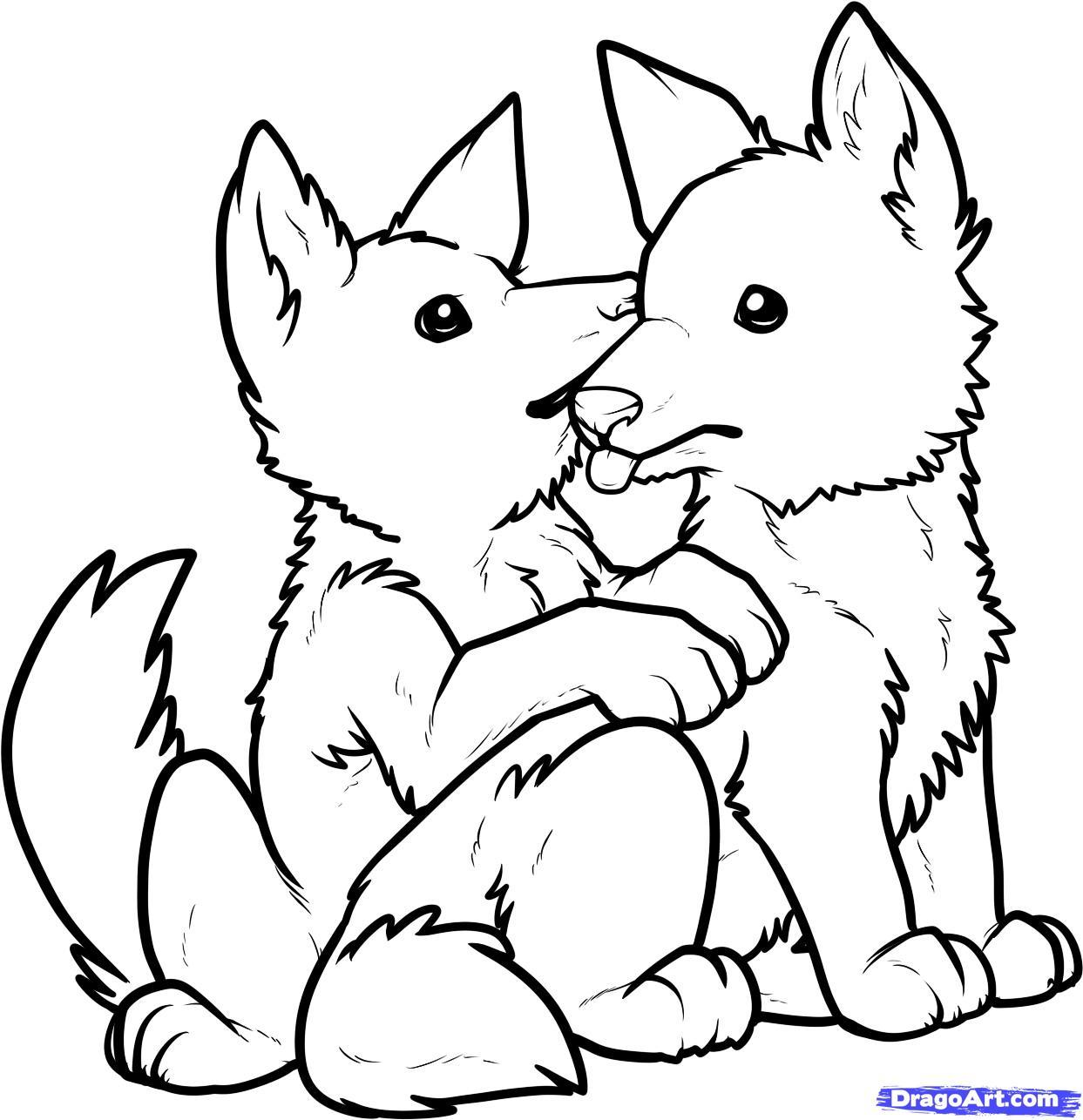 1243x1286 Step 12 How To Draw Wolf Pups Puppies A Puppy