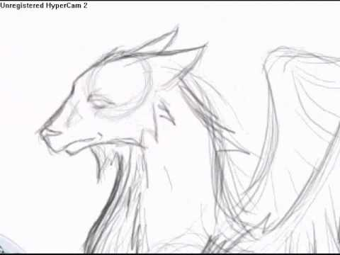 480x360 Me Drawing Eaglewolf Hybrid