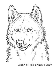 236x284 Resting Wolf Lineart By Colette Anderson On Wolf