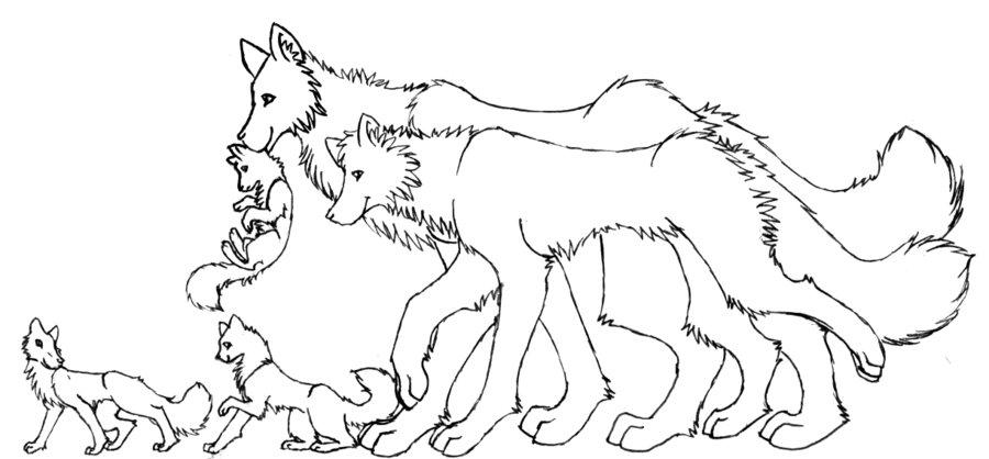 900x418 Free Wolf Family Lineart By Trisomy On DeviantArt