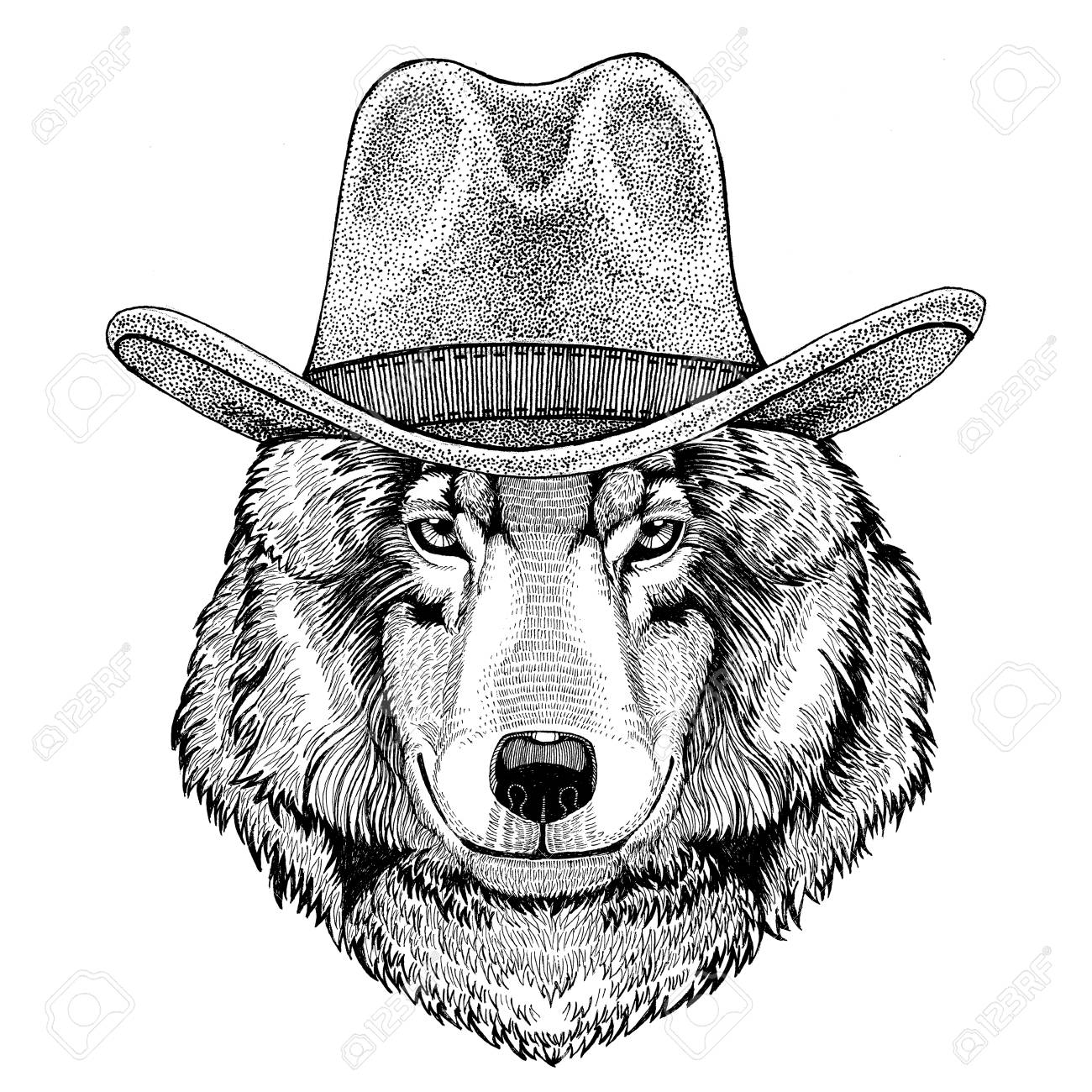 1300x1300 Wolf Dog Wild Animal Wearing Cowboy Hat Wild West Animal Cowboy