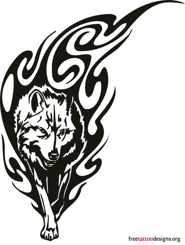 Wolf Head Drawing At Getdrawings Com Free For Personal Use