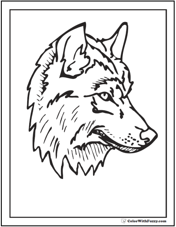 Wolf Head Drawing Step By Step at GetDrawings.com | Free for ...