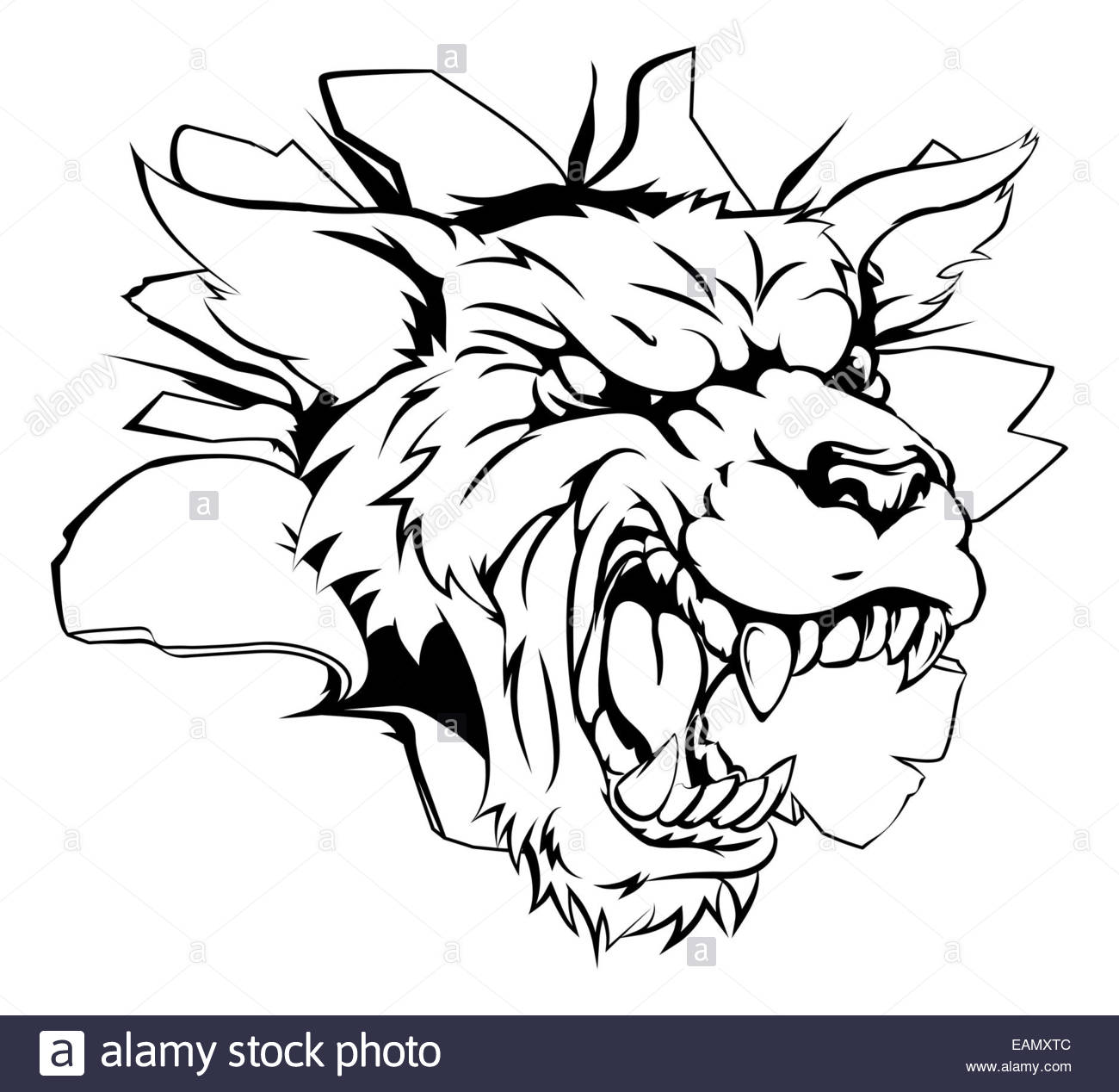 Line Drawing Wolf Head : Easy wolf head drawing at getdrawings free for