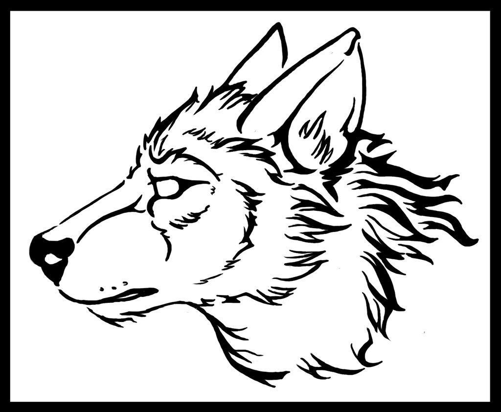 Line Drawing Wolf Head : Wolf head line drawing at getdrawings free for