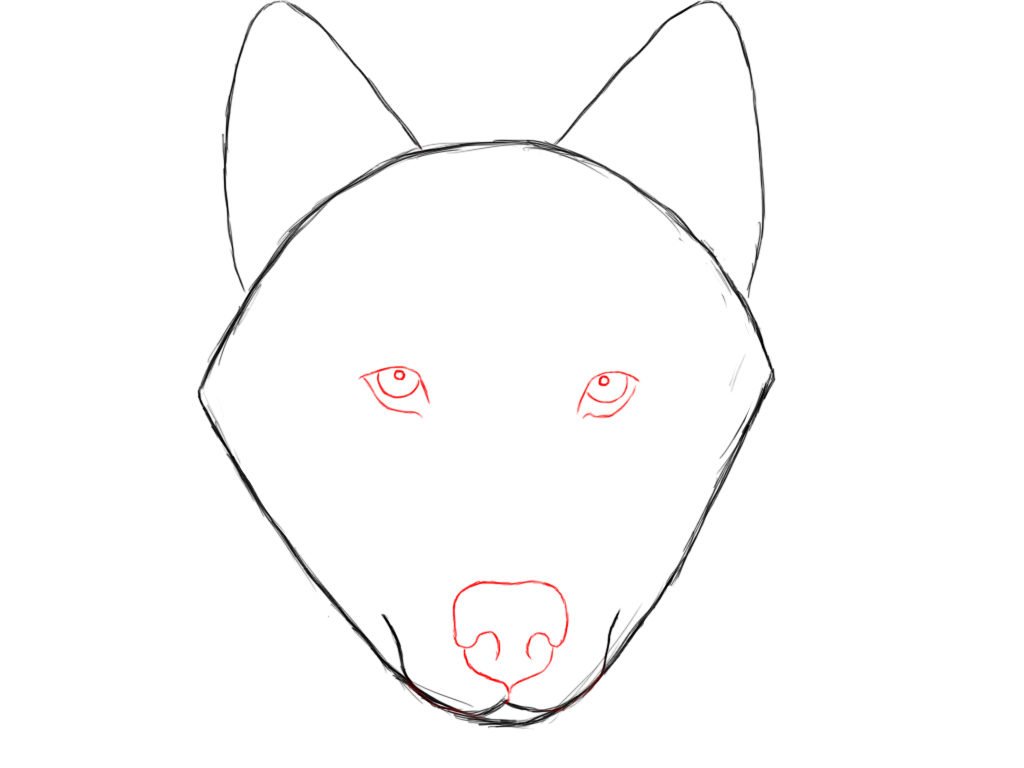 1024x768 How To Draw Wolves