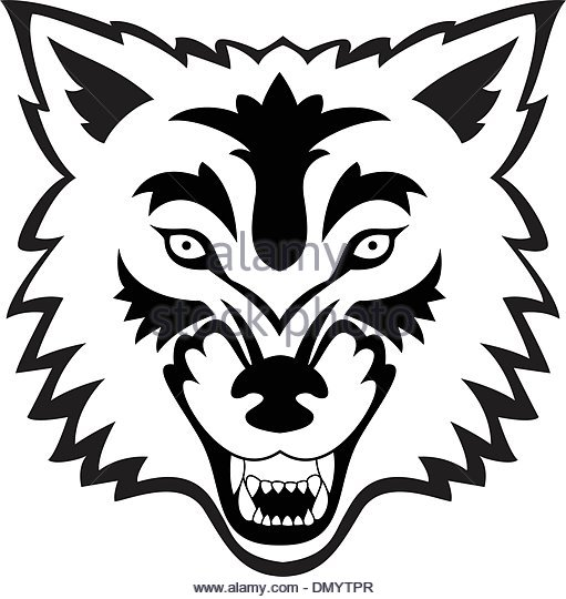 511x540 Wolf Head Tattoo Stock Photos Amp Wolf Head Tattoo Stock Images